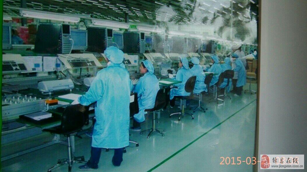 江苏无锡市   公司行业:电子技术/半导体/集成电路