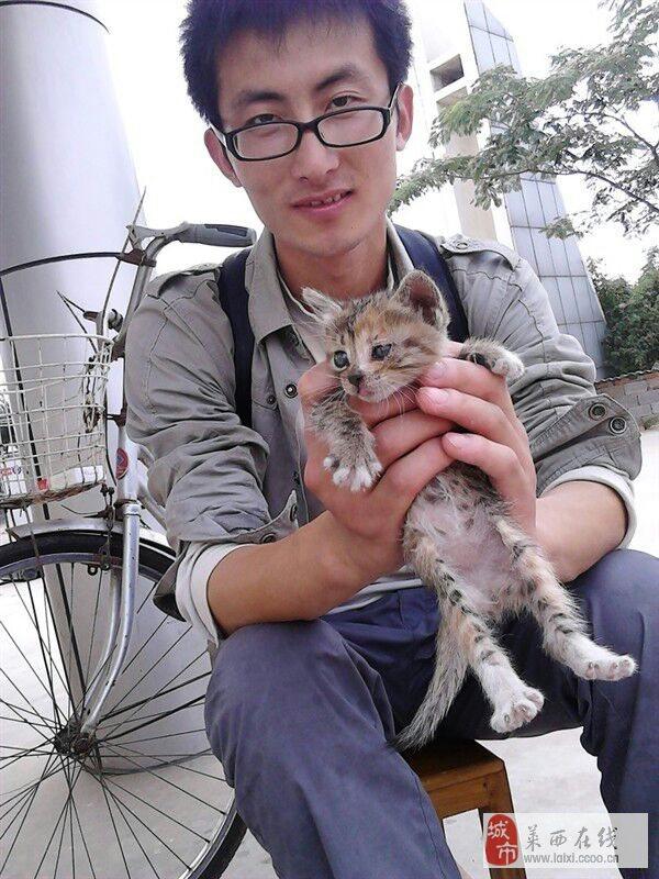 【美女秀场】张子睿 27 射手 餐饮 微封面