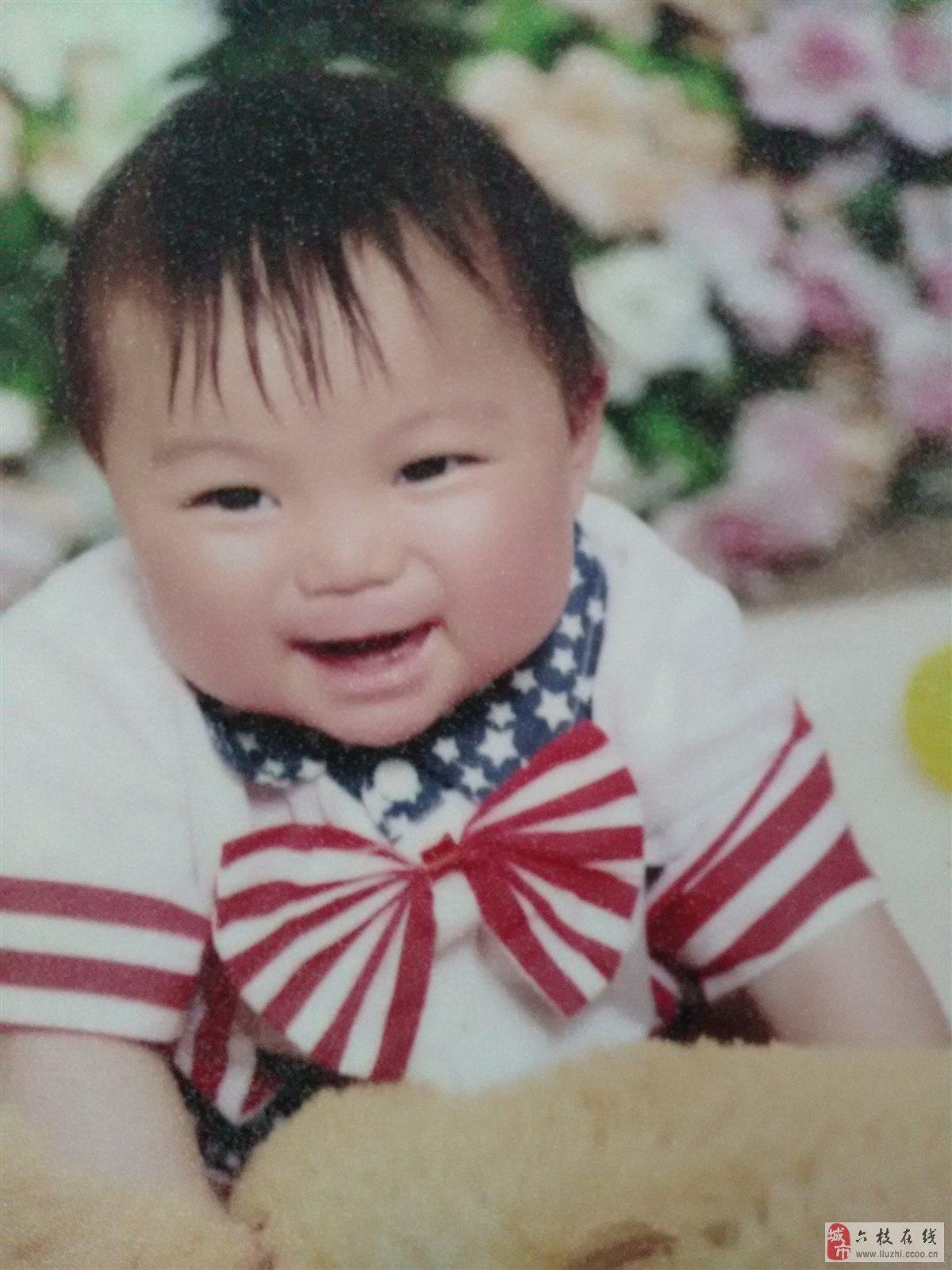 六枝微封面第八期No.1【萌宝秀场】王晨俊逸 男宝 2014-08-23出生