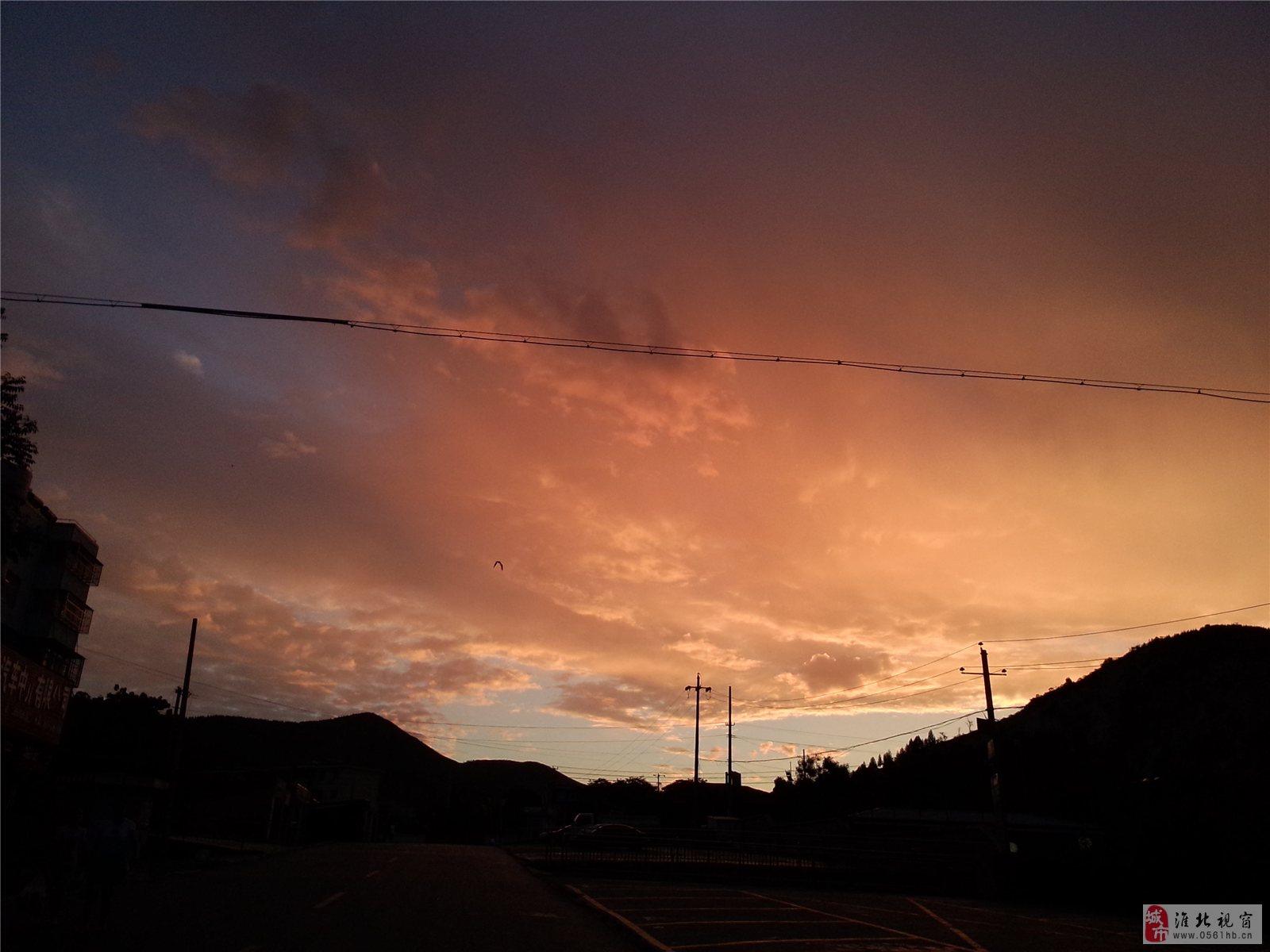 今天下雨前拍的