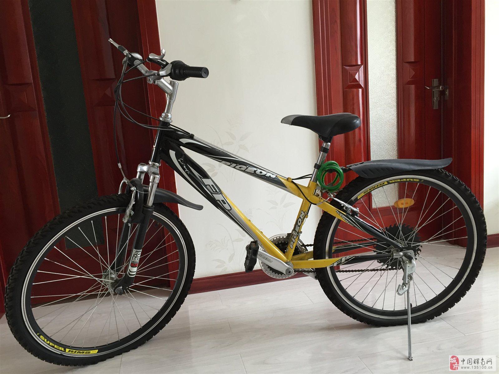 出售飞鸽牌9.5成新变速自行车一台