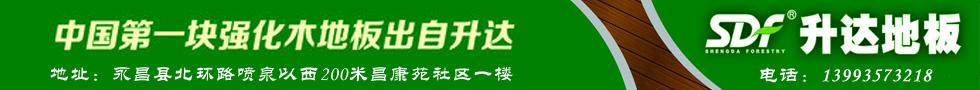 中国第一块强化木地板出自升达