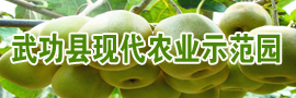 武功县现代农业示范园