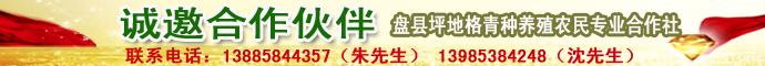 盘县坪地格青种养殖农民专业合作社诚邀合作伙伴