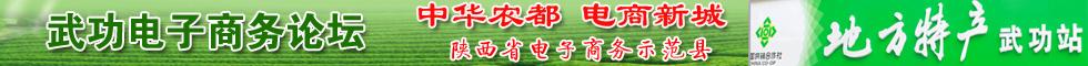 武功电子商务论坛交流互动平台!