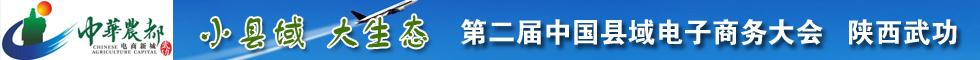 第二届中国县域电子商务大会陕西武功