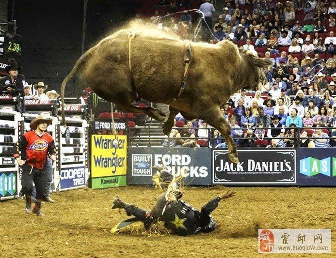 骑牛赛上选手被牛弹踏惨痛一幕 不忍目睹
