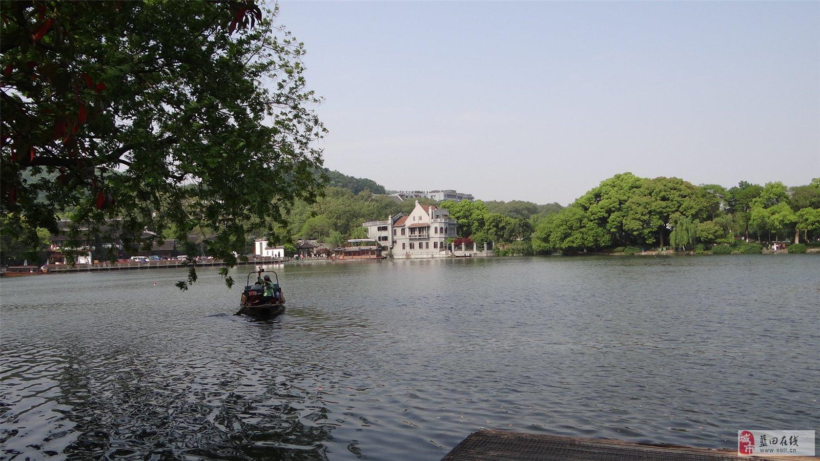 西湖美景三月天图片