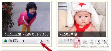 【公告】明星宝宝网络及微信投票步骤说明