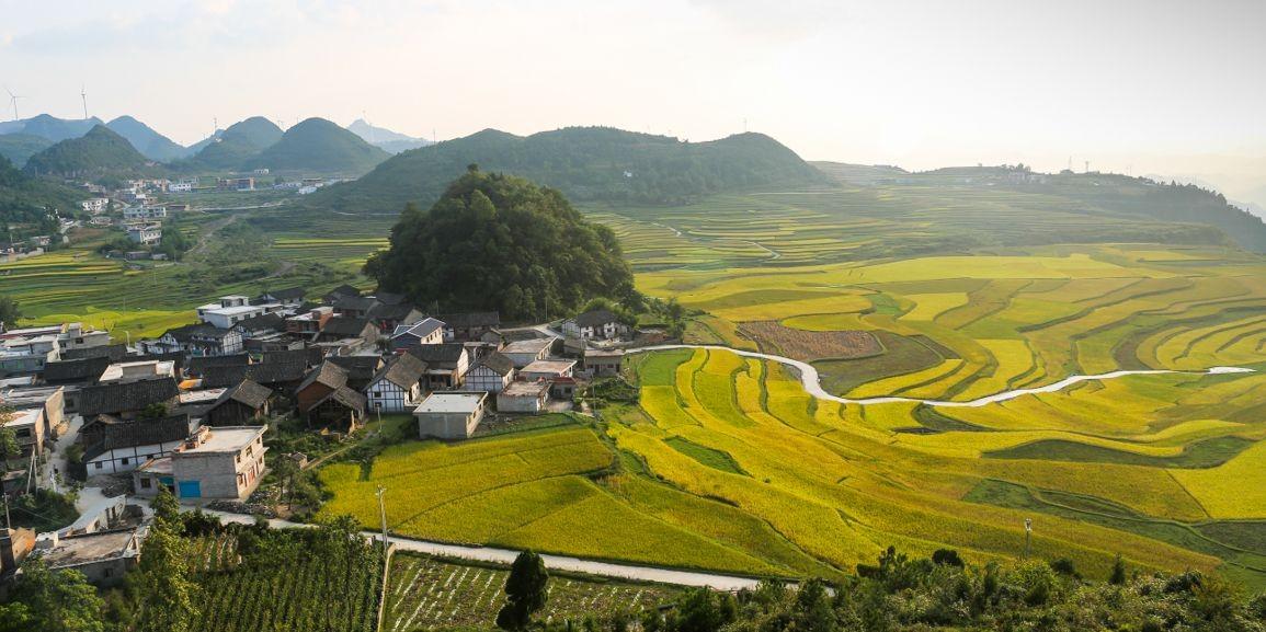 天柱信息港-贵州省天柱县综合门户网站-天柱人自己的