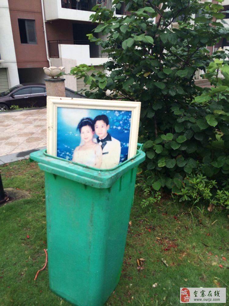 丢在垃圾桶里的爱情