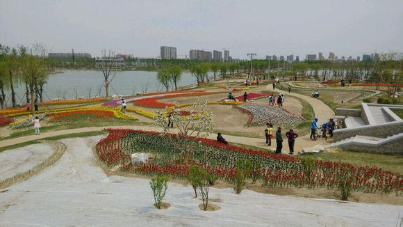盘锦大洼西湖怎么样_【图】单人单车自驾盘锦大洼西湖公园