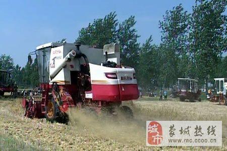 家住乐土镇柳林社区的村民张西彬家里种了15亩大麦,眼下正是收获的