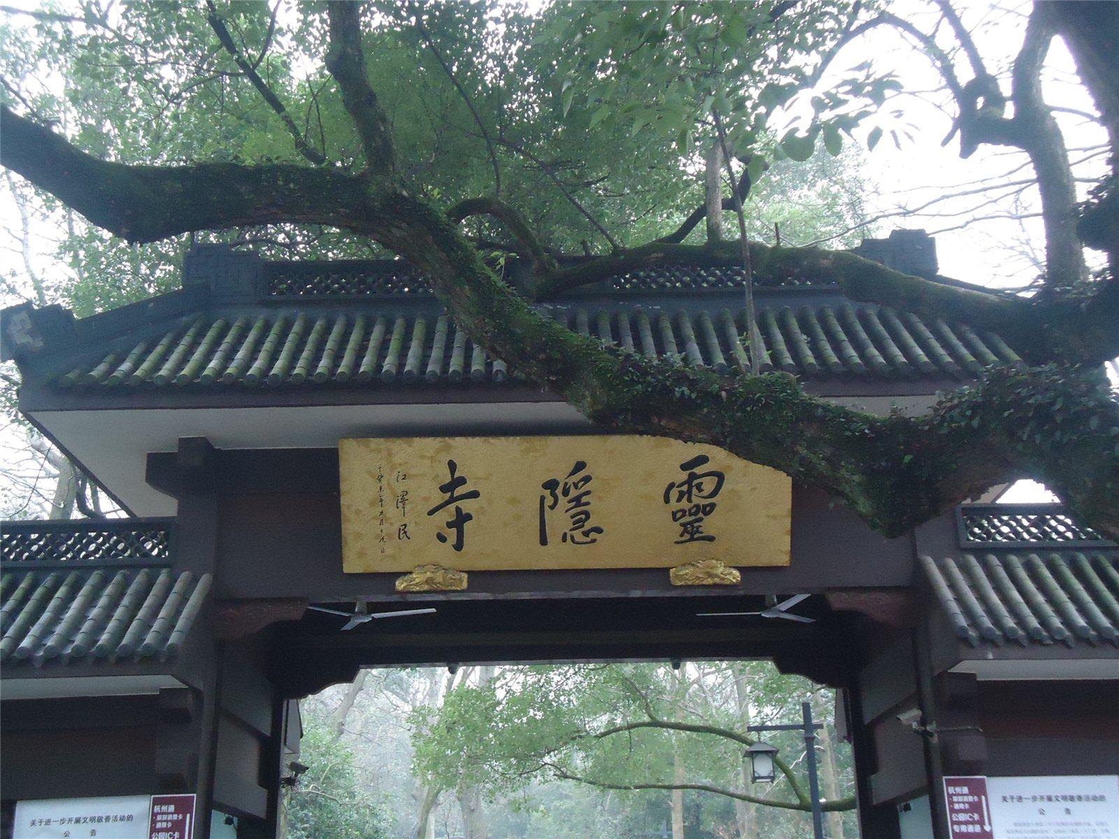 杭州2014.3.3论坛图片