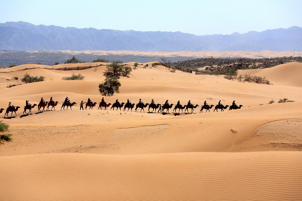 沙漠中海市蜃楼 图片图片