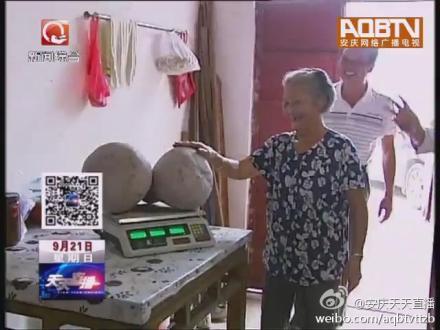 桐城市黄甲镇黄铺村的吴老今年就意外的收获了两只连体南瓜