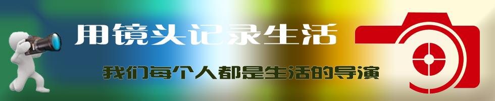 滨州拍客封面