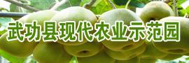 武功县现代农业示范园区办公室