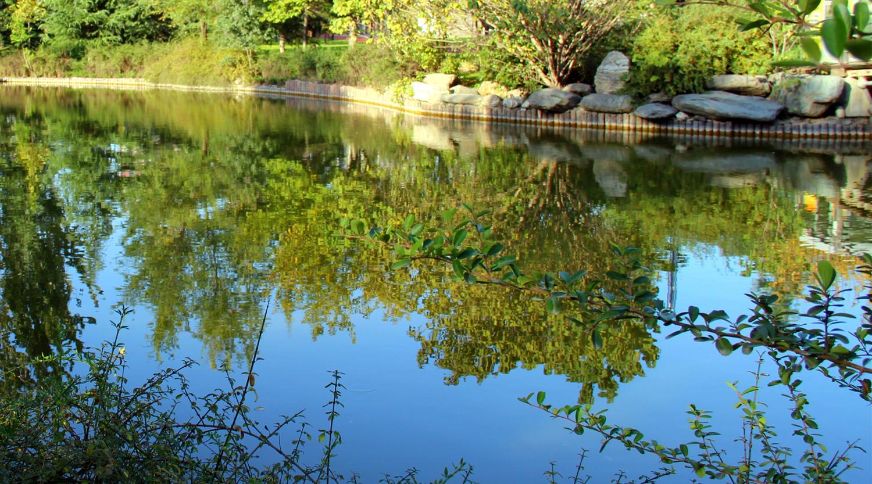 崇明公园v公园别墅岛城市长兴在什么西安独园路上图片