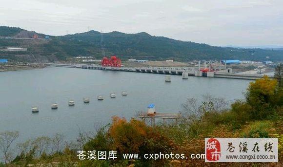 苍溪县劳动和社会保障局 首页