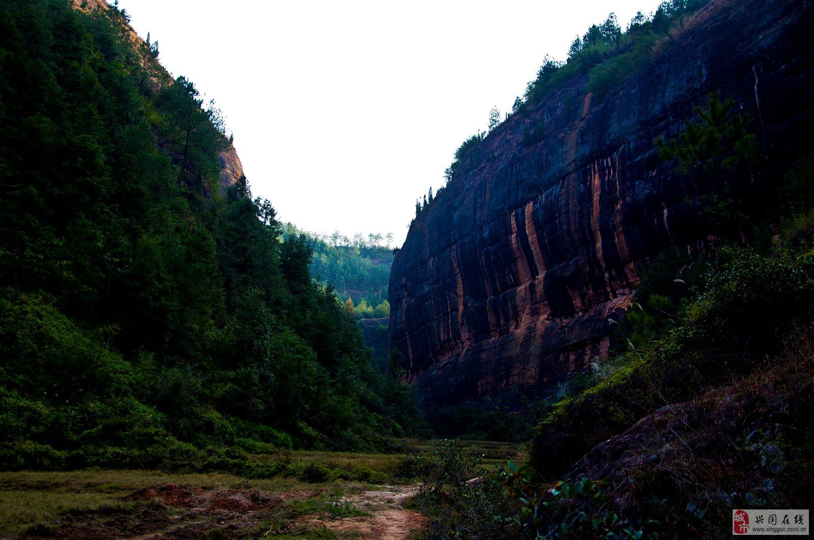 兴国均福山森林公园
