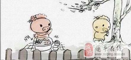 两只小猪的爱情故事 让人感动 引人深思