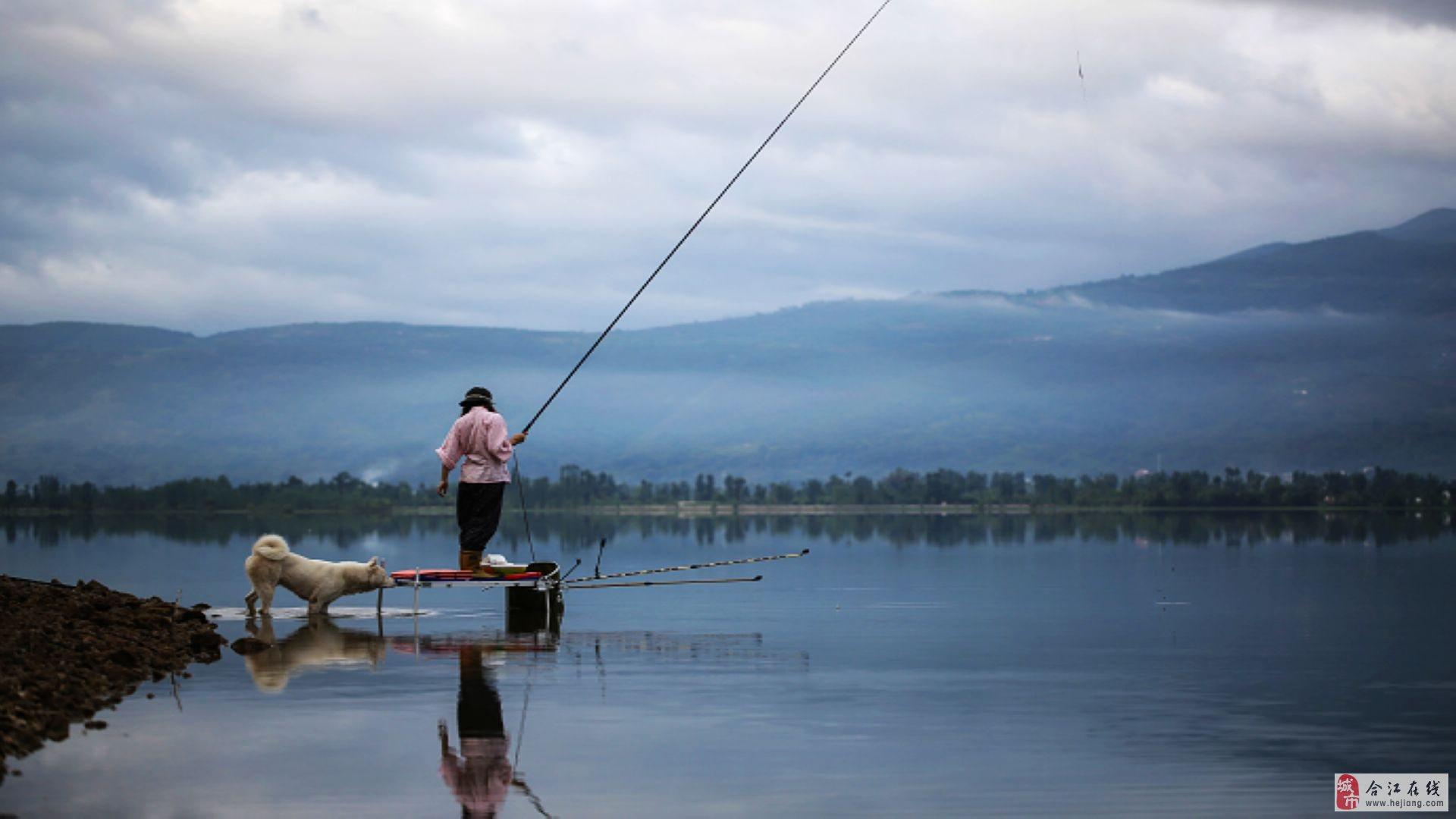 钓鱼桌面壁纸高清