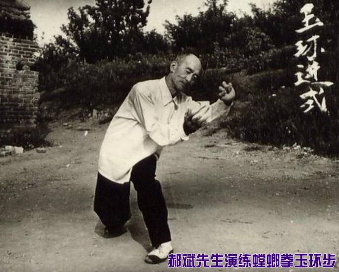 pdd螳螂拳gif_主题: 螳螂拳的传承故事
