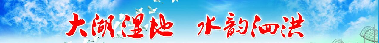 泗洪微视频封面