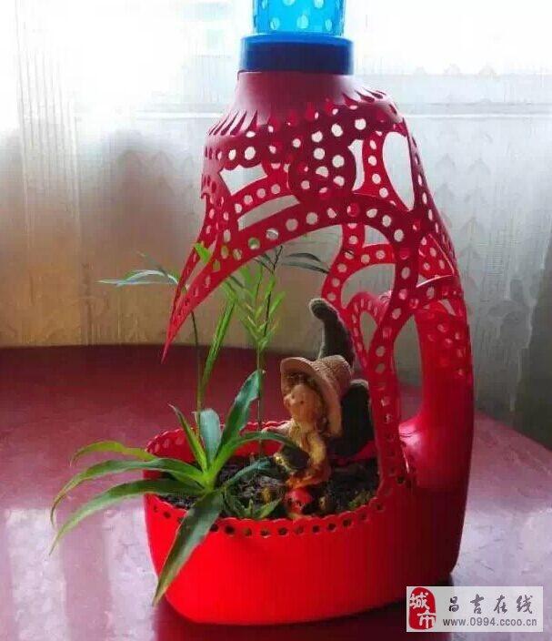 """无意间在网上看到用洗衣液瓶做成的""""花盆"""",心灵手巧!"""