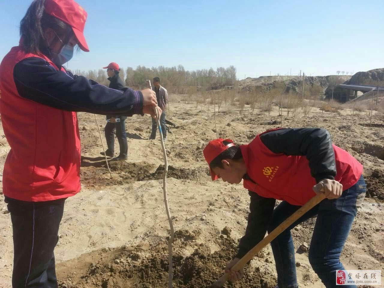 金塔汽修中专志愿者爱心植树现场