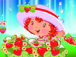 吃草莓活动开始啦~~!!!