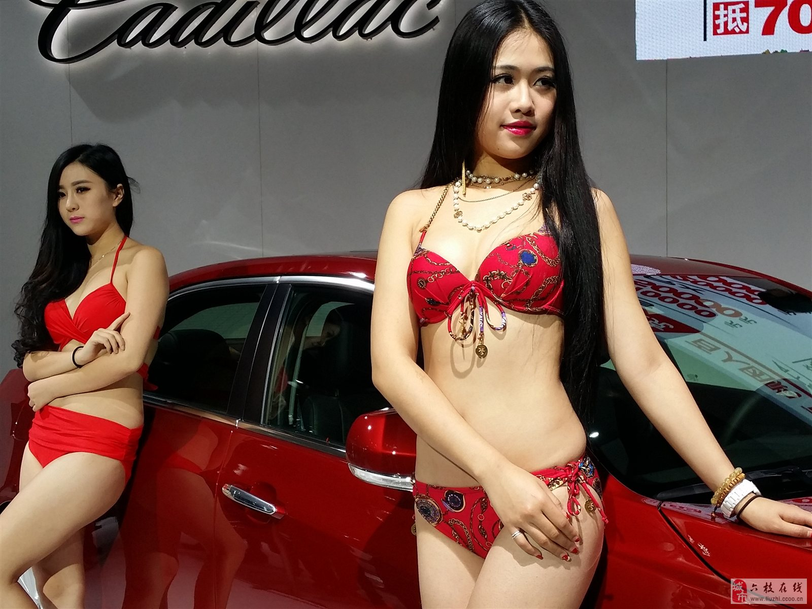车模,约吗?
