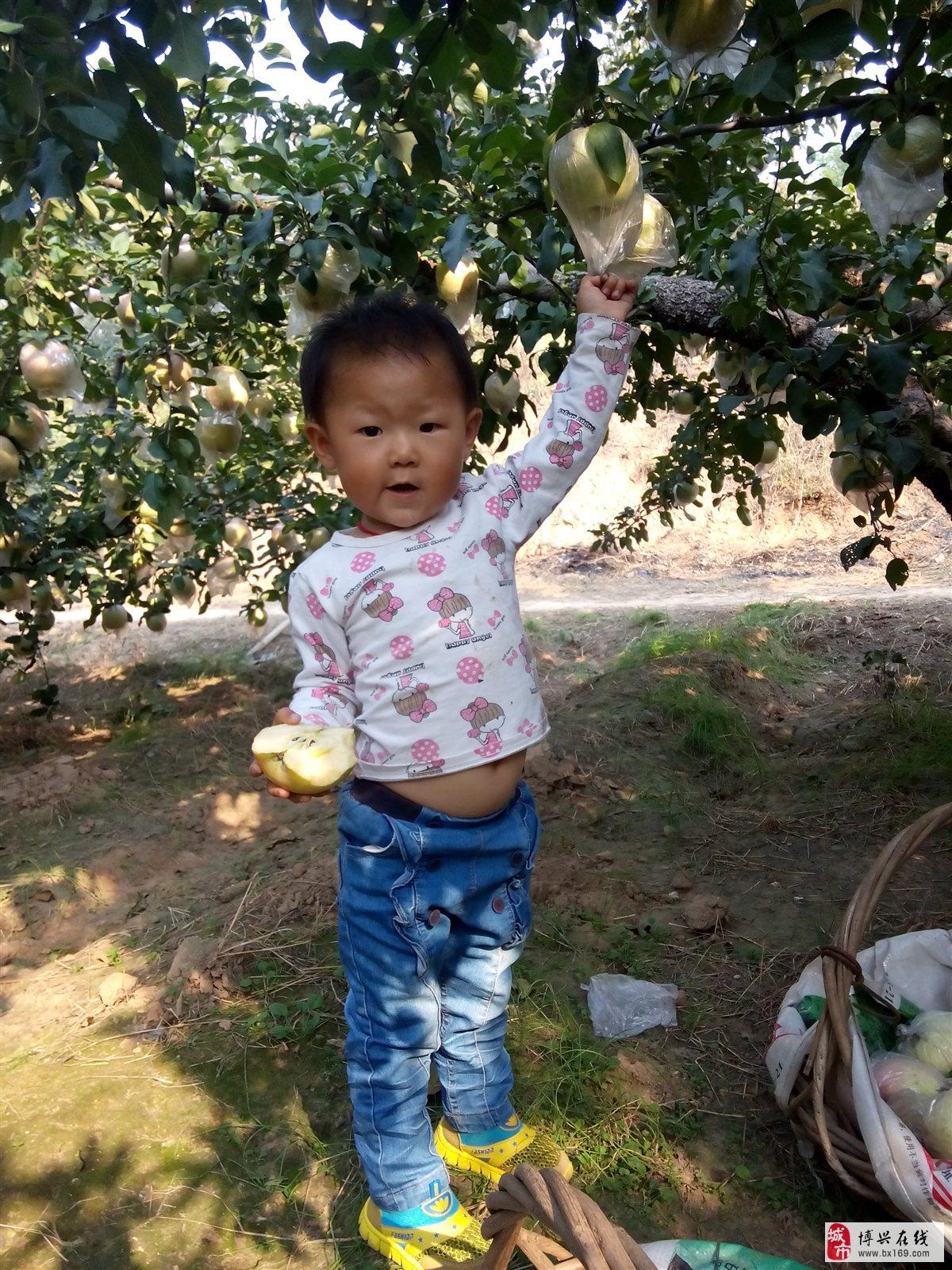 我叫张佳瑶,今年两岁半了,我喜欢唱歌跳舞,我是一个活泼可爱的小姑娘
