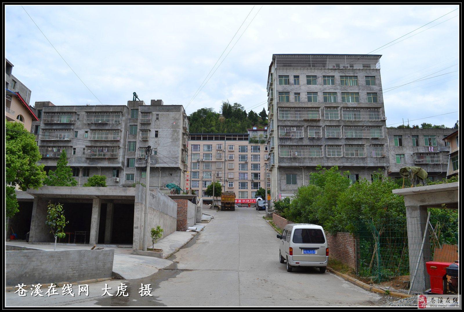请问谁知道四川省广元市苍溪县社保局的电话?