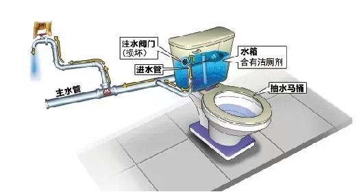 马桶清洁剂倒灌导致