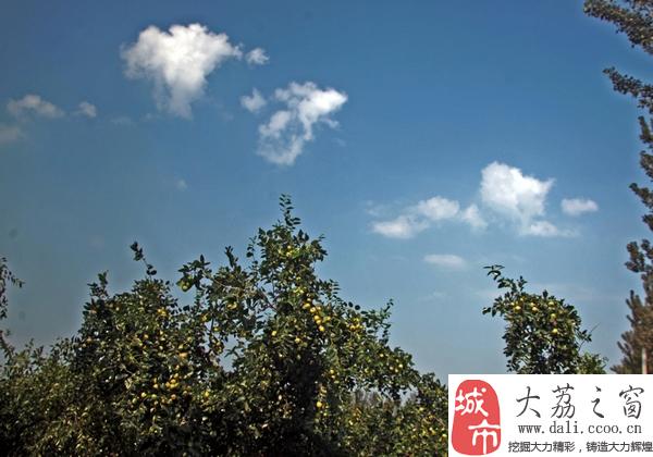 城市中国首页 中国城市旅游景点大全 大荔旅游景点大全 03 大荔旅游