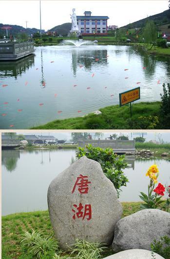 唐湖汉池赏鱼