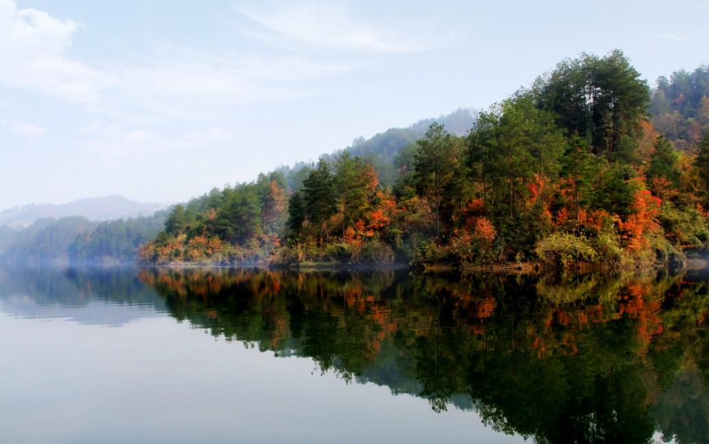 酉水河大溪段全长约15公里,属于峡谷型河谷景观,两岸悬崖峭壁,平均坡度为60度左右。多处成90度直角,凹凸有致,犹如鬼斧神工。两岸植被覆盖良好,一年四季色彩变幻无穷,呈现出绝好的观景效果。常有野猪、野猴等珍稀动物出没其间,鱼群娓娓游动,沿岸树枝倒映其中,构成一幅幅鱼游枝头鸟宿水的绝妙意境。水中野鸭嬉戏,河面白鹭飞翔,偶掠水面,泛起片片涟漪。置身其间,恍若人间仙境,流连忘返。整个河流由发源地至大溪出境处,沿岸无大中型城市,无工矿企业,水质极佳。河水晶莹剔透,好似一颗颗璀璨的明珠。雄伟壮观的土家吊脚楼依山而