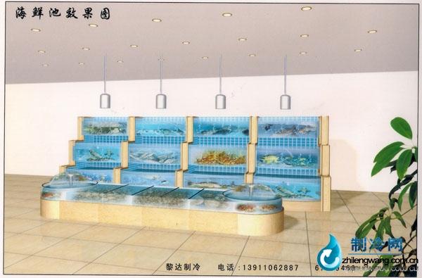 海鲜鱼缸平面设计图展示