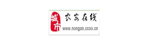 农安县第一大综合信息门户网站