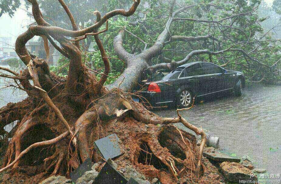海南台风季节 2016年海南台风预测 台风 海南最近有台风吗 海南天气