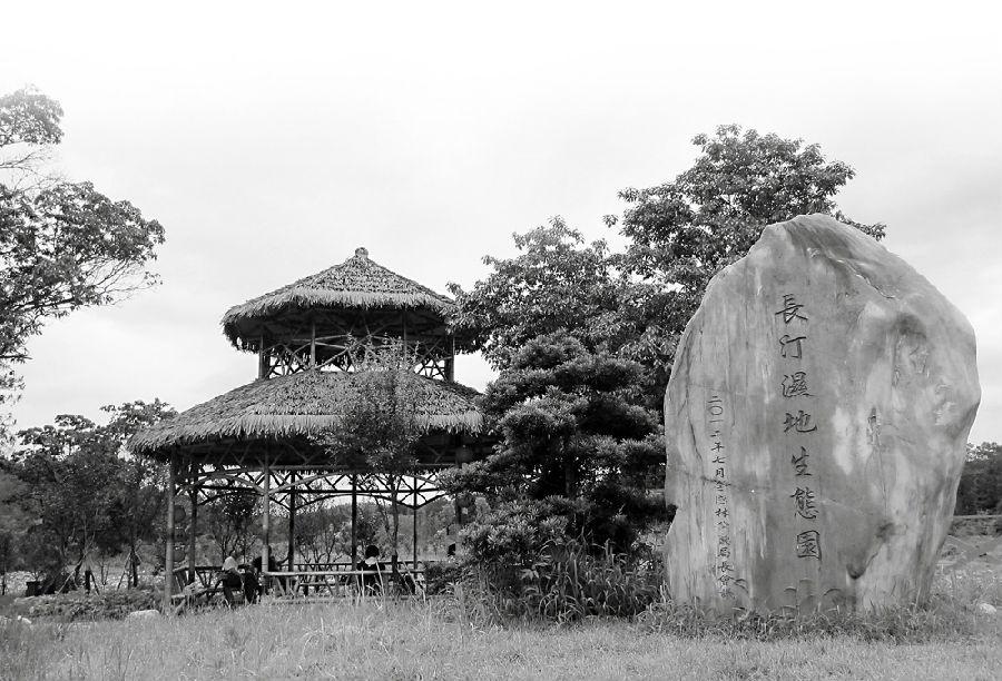 漳州林下生态公园