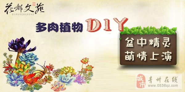 盆中精灵·萌情上演·花都文苑多肉植物diy主题活动邀您参加