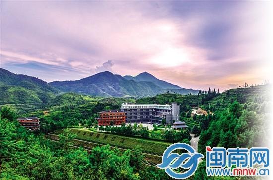 安溪现代茶业建设结硕果 科技创新领跑全国茶行业