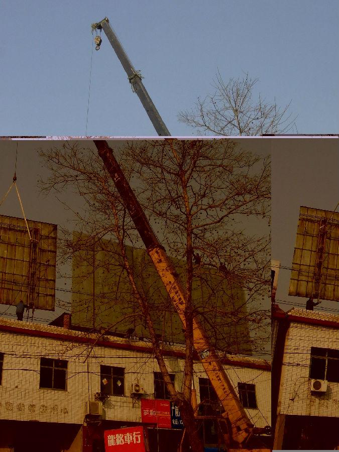 广告牌进行了拆除,出动了5辆执法车,20多名执法队员,动用了一台大型吊