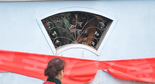 自贡别墅区别墅狂吠安全感为防患养犬缺乏扰注意事项电梯富人图片