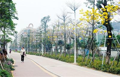改造公园,小游园10个