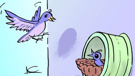 不少居民觉得有小鸟安家落户是好事