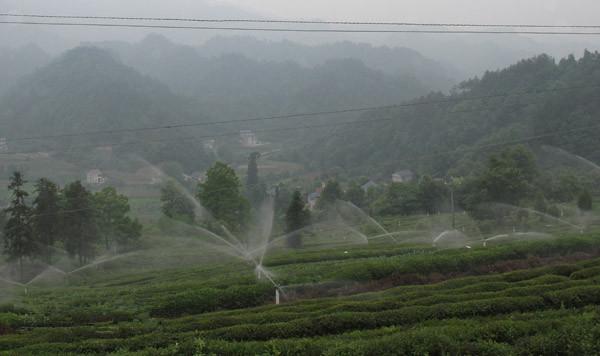长阳高效节水灌溉试点县建设全面推进